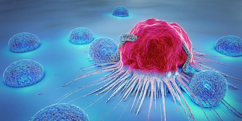 inzicht in kanker