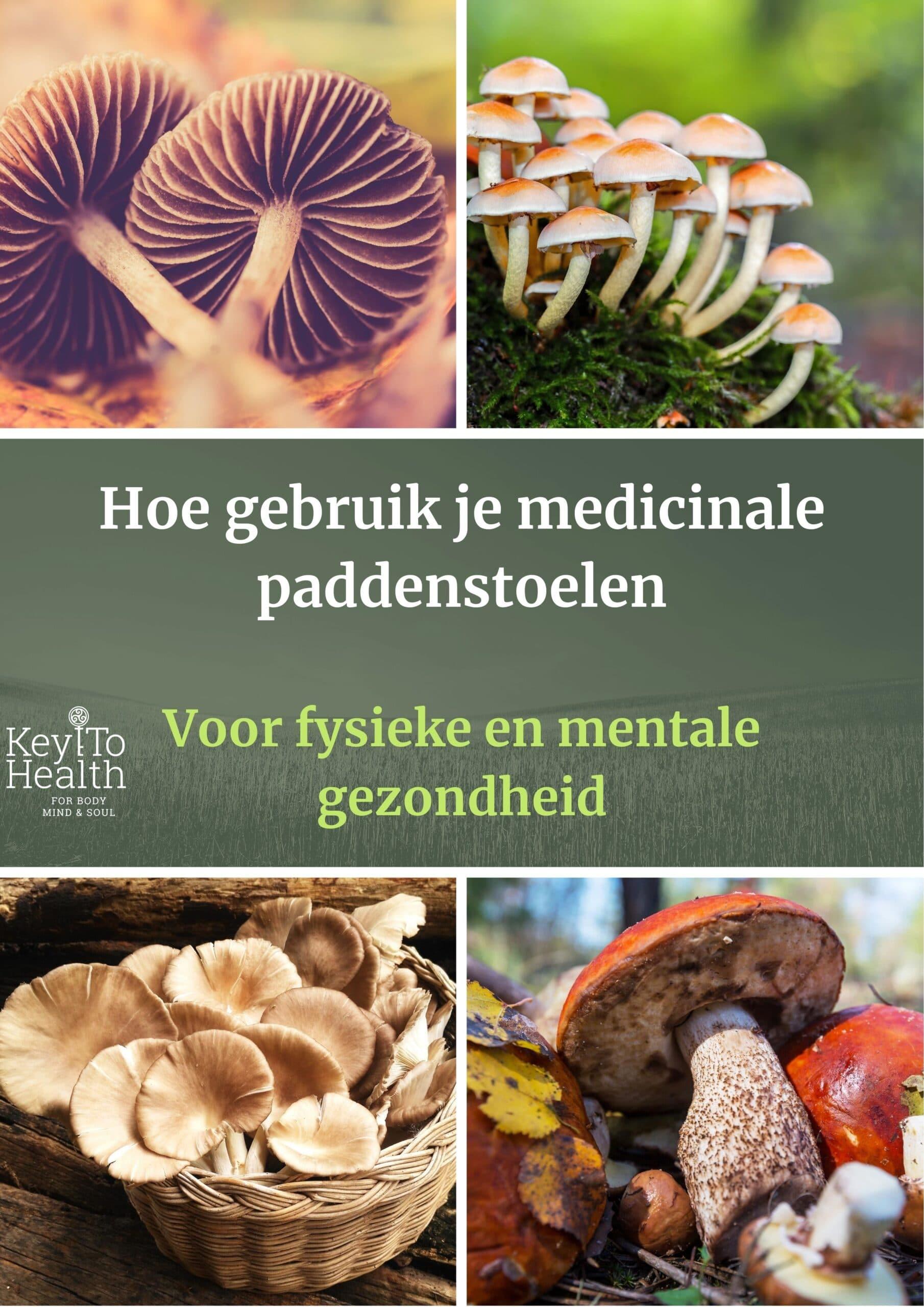 e-book medicinale paddenstoelen
