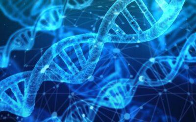 Het mysterie van ons DNA