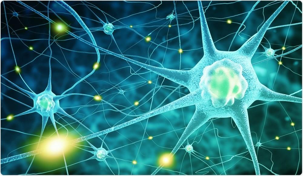 Het belang van de balans in jouw neurotransmitters + tips