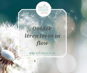 leven in flow