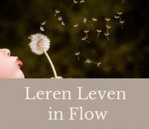 leren leven in flow