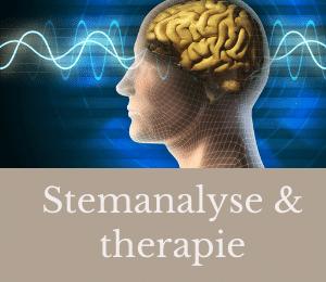 stemanalyse - aquera - voice analysis